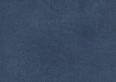 Blue BLJ 10