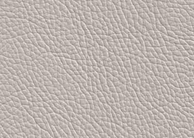 Silver Grey NC041E