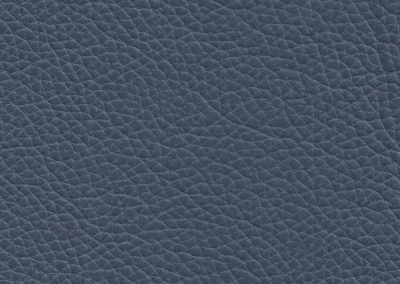 Ocean Blue NC313E