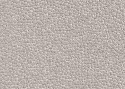 Silver Grey BX 041E