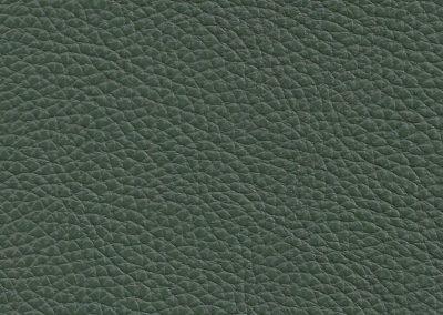 Chive Green NC371E
