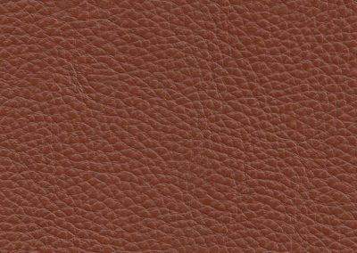 Warm Brown NC605D