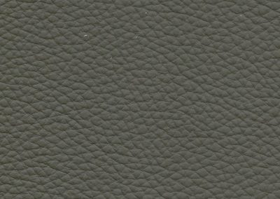 Pecan Olive Green BE 532E