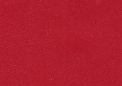 Accent AN 945B Scarlet